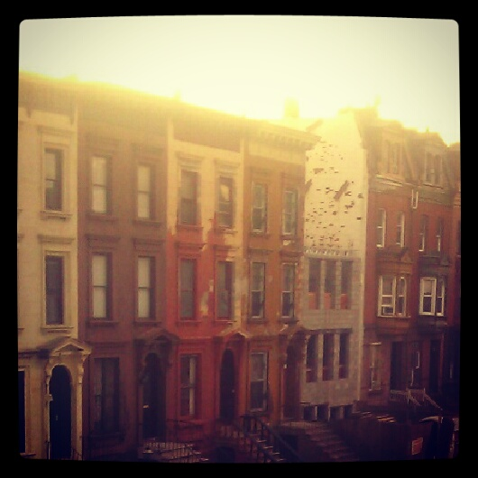 """""""Bed-Stuy Or"""" by Kimberly Lieu"""